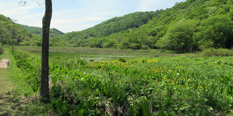 遊歩百選−信州の旅.com−