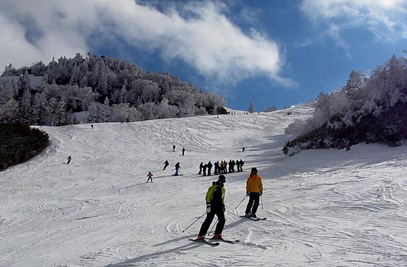 場 スキー 志賀 積雪 高原 志賀高原 焼額山スキー場